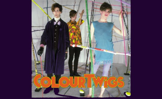 Colour Twigs